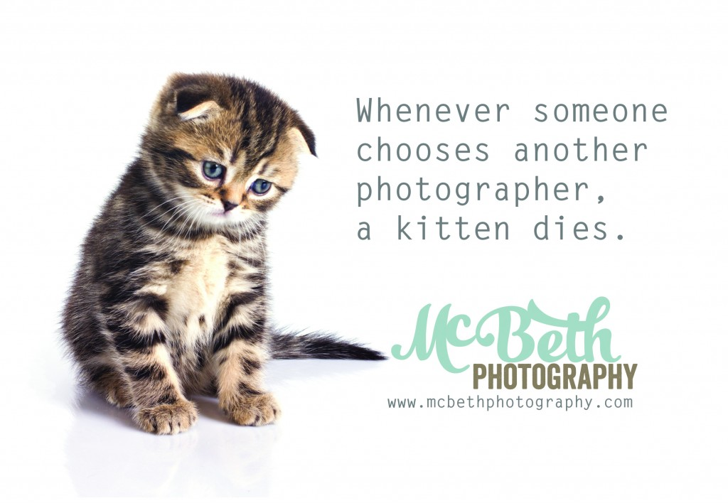 swdad-kitten-dies
